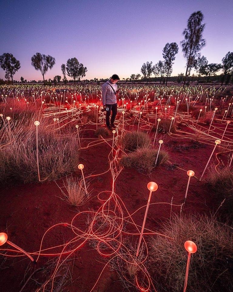 световое поле азия фото свадебный